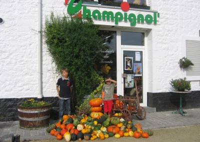 Champignol1
